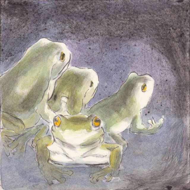 frog-buddies-web